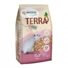 melange-terra-rat-vadigran
