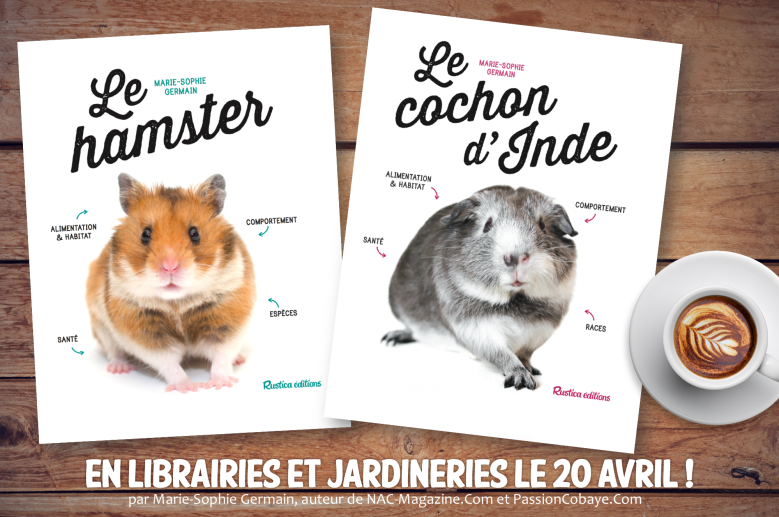 New livres 2.png