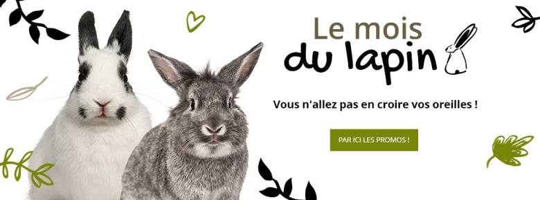 1810-mois-du-lapin