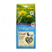 excel-snacks-melange-d-herbes-country-garden-burgess