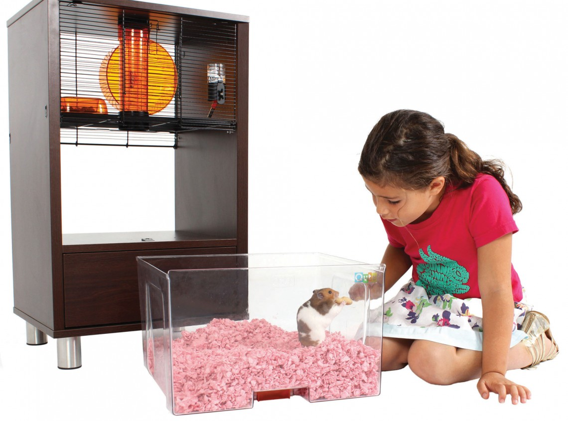 Hamster_in_removable_bedding_tray_of_walnut_qute_hamster_and_gerbil_cage.jpg