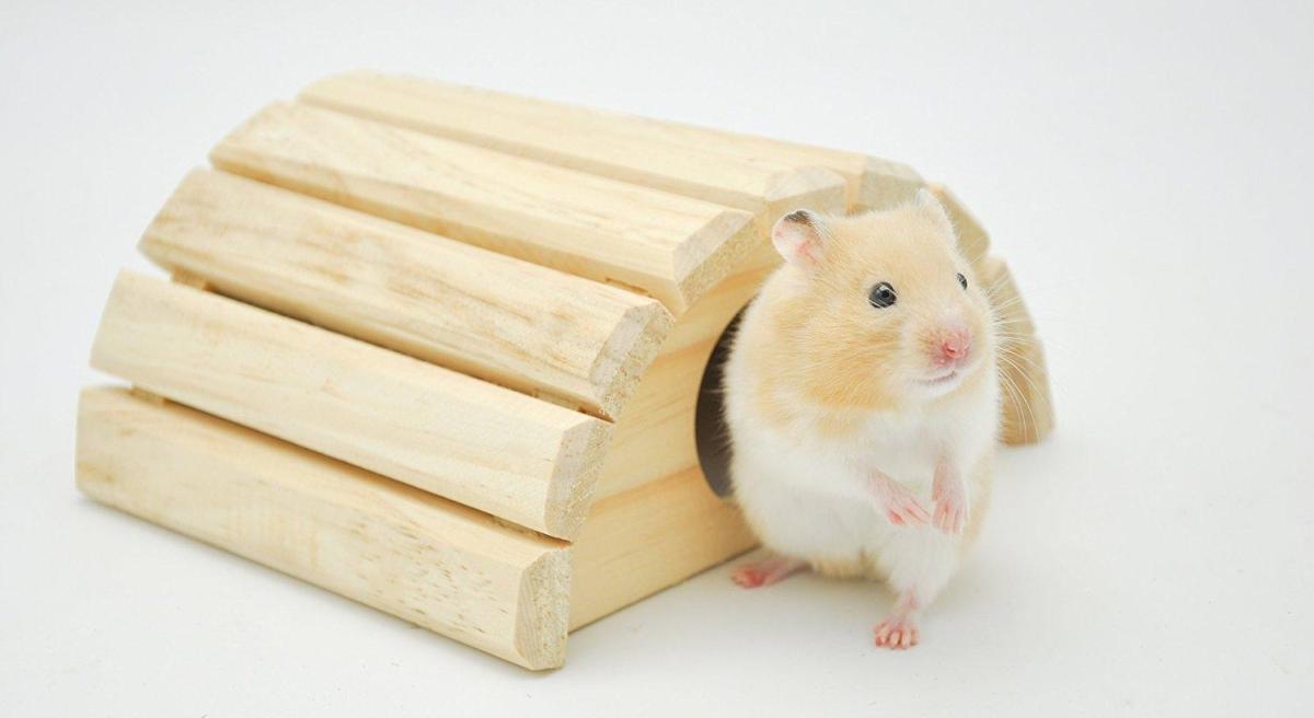 Comment nettoyer et désinfecter les accessoires en bois ?