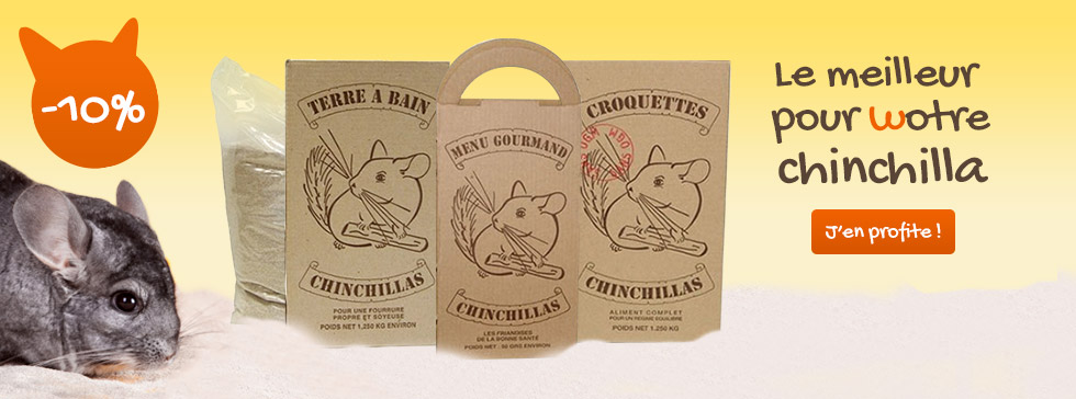 1807-chinchillas-terroin