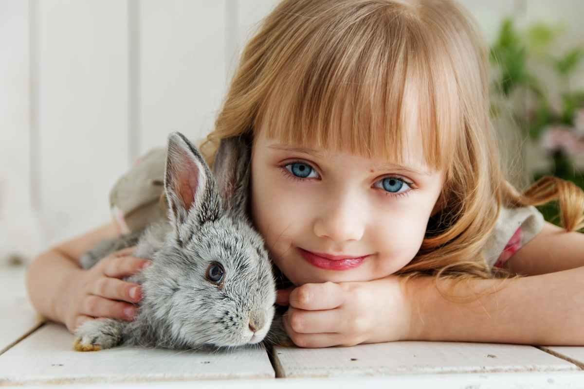 Le lapin est-il le NAC idéal pour les enfants ?