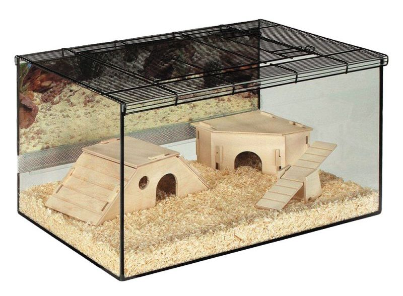 18499_PLA_skyline_Hamsterterrarium_Kerry_1