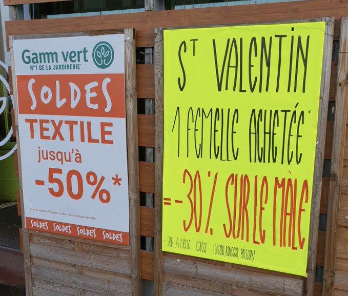 Gamm Vert Offre Une Reduction Scandaleuse Sur Les Couples D Animaux Pour La Saint Valentin Nac Magazine